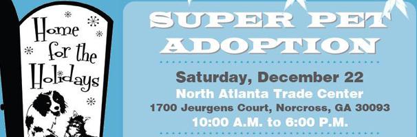 Super Pet Adoption Home for the Holidays