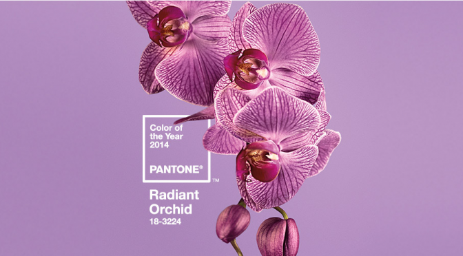 It's Not Just Orchid, it's Radiant Orchid: Pantone 2014 Color of the Year