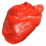 Anatomical Heart Stress Reliever
