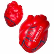 Anatomical Heart With Blue Veins Stress Reliever