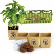 Grow Pot Eco-Planter Herb 3-Pack