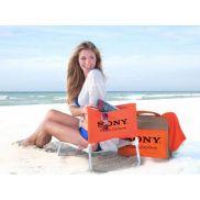 Wave Rider Beach Chair